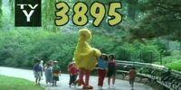 Episode 3895