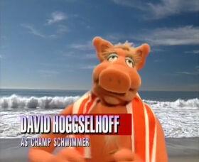David Hoggselhoff Champ Schwimmer