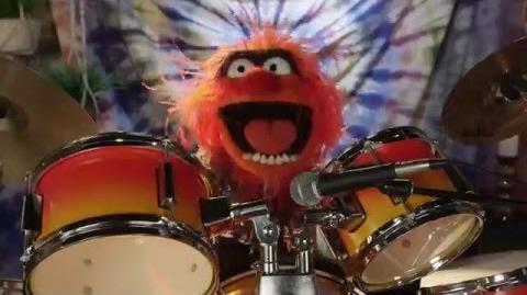 Dr. Teeth and The Electric Mayhem are Going to Outside Lands 2016 The Muppets