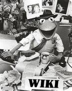 Kermitwiki