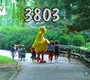 Episode 3803