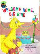 Welcome Home, Big Bird