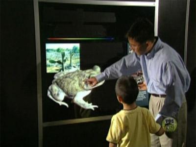 File:Ewfrogs-film.jpg