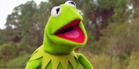 On the Set with Kermit
