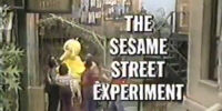 The Sesame Street Experiment
