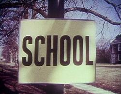 Schoolsignspin