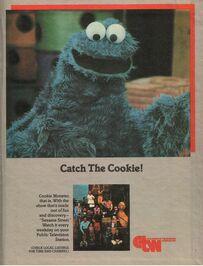 Catchthecookie
