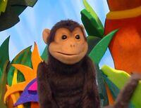 Animal Show monkey