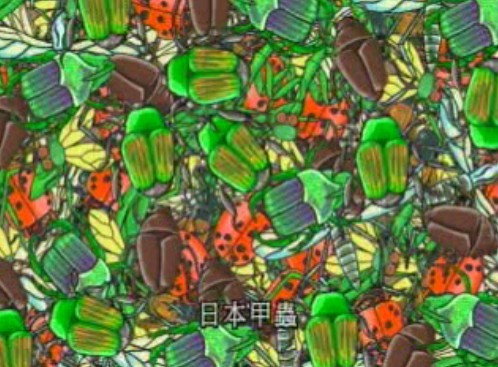 File:04 That's a Lot of Bugs.jpg