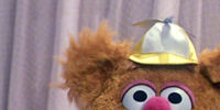 Fozzie Bear's Alternate Ages