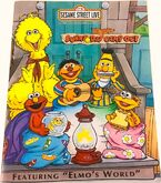 Sunny day camp out book