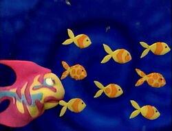 Rainbowfish.8