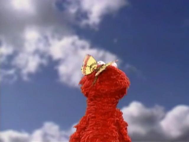 File:ElmoButterfly6.jpg