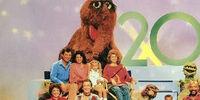 Season 20 (1988-1989)