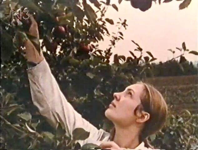File:ApplePicking.jpg