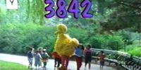 Episode 3842