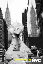 Nycgo-big-bird-elmo