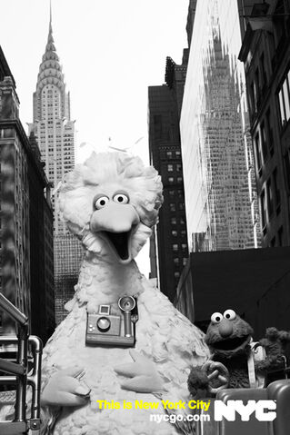 File:Nycgo-big-bird-elmo.jpg