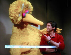Big-Bird-&-Antonio-Banderas-1