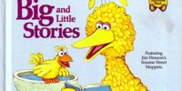 Big and Little Stories