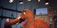 Sesame Street wrap party