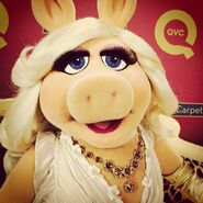 Instagram QVC
