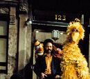 Sesame Street cast photos