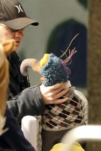 Gonzo-choking-BTS-Muppets