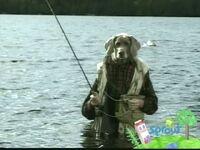 Wegmandogs.fishing