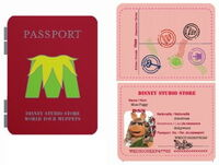 Passport pin piggy