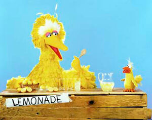 Big Bird and Little Bird lemonade
