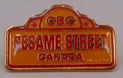 Sesame street park pin