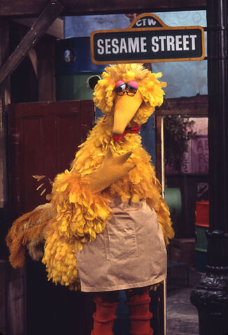 File:Bigbirdasmrhooper.jpg