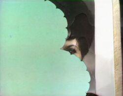0040.munchmunch