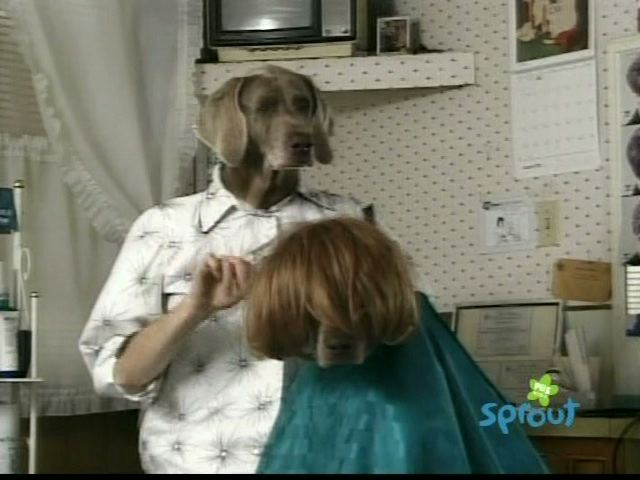 File:Wegmandogs.hairstylist.jpg