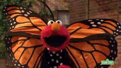 Elmo-Butterfly