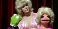 Connie Stevens Muppet