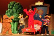 Elmo jarig show