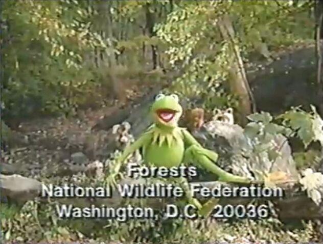 File:Nwf-critters.jpg