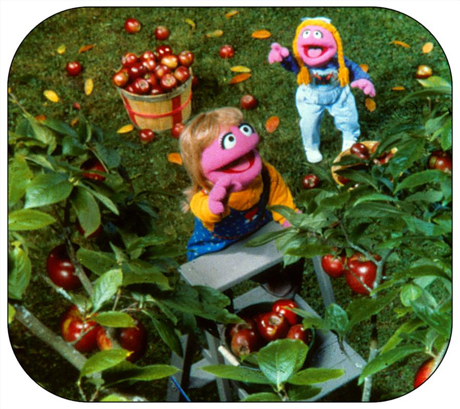 Prairie Dawn Muppet Wiki Fandom Powered By Wikia