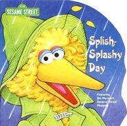 SplishSplashyDay2000