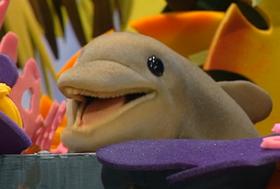 Fluke the Dolphin