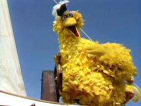 Admiral Bird
