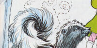 Daisy (skunk)