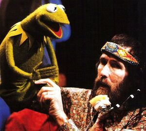 Jim and kermit 2