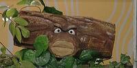 Whispering Log