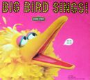 Big Bird's Poem