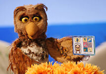 also? Muppet Owls.   the Little Red Reviewer