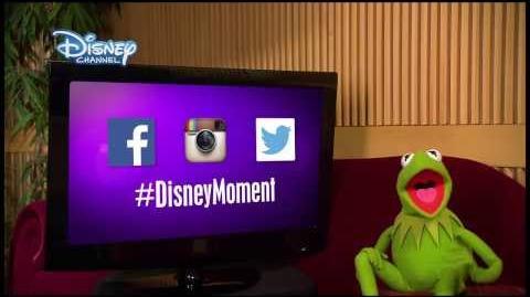 Disney Moment - Gewinnspiel - Kermit - DISNEY CHANNEL