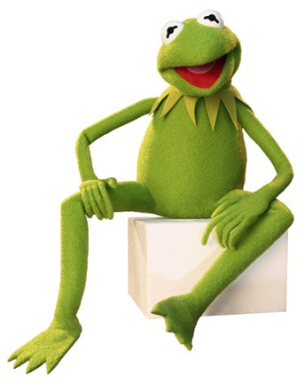Kermit der Frosch  Muppet Wiki  FANDOM powered by Wikia